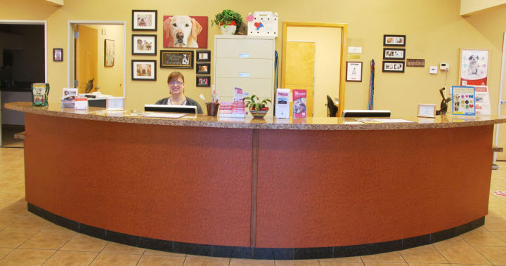 Reception Area at Northwest Animal Hospital